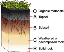 Msmcgartland licensed for non commercial use only soil for Chemical properties of soil wikipedia